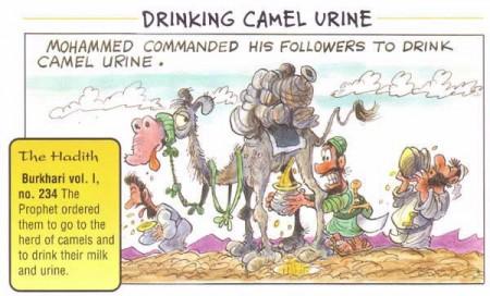 Camel-urine-islam-muhammad-450x272